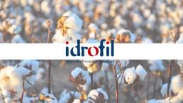 Logo Idrofil - Agenzia di comunicazione Napoli - Libellula Grafica Lab