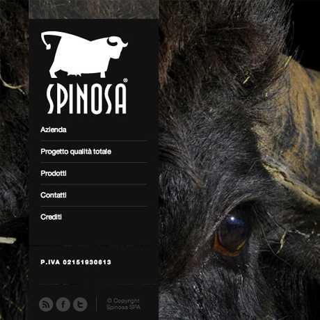 Realizzazione sito web Spinosa Mozzarella - Web agency Napoli - Libellula Grafica Lab