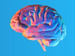 Digital Neuromarketing, la neuroscienza applicata nella comunicazione | Libellula Grafica Lab